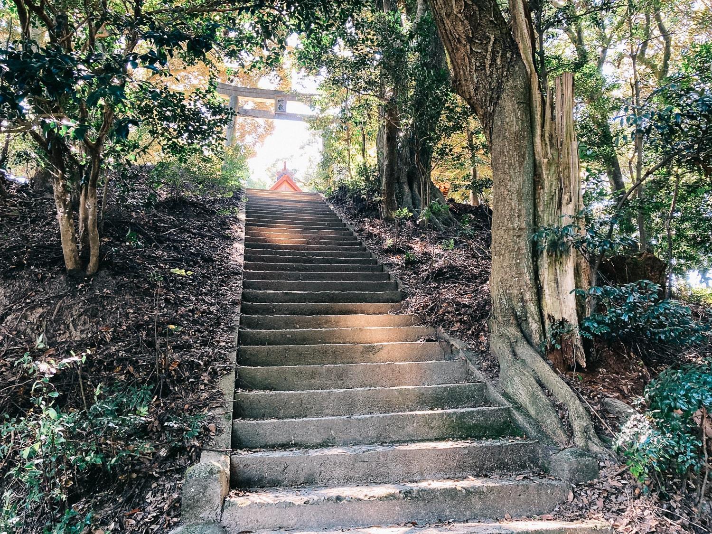 山頂直下の階段
