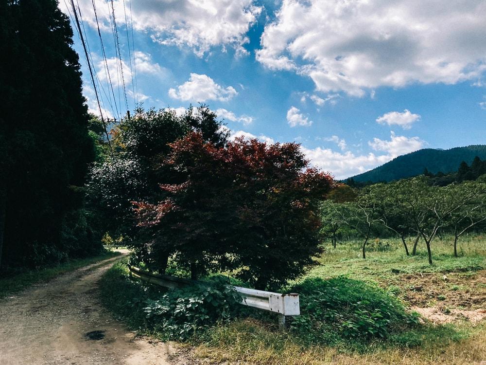 加茂神社から二丈岳