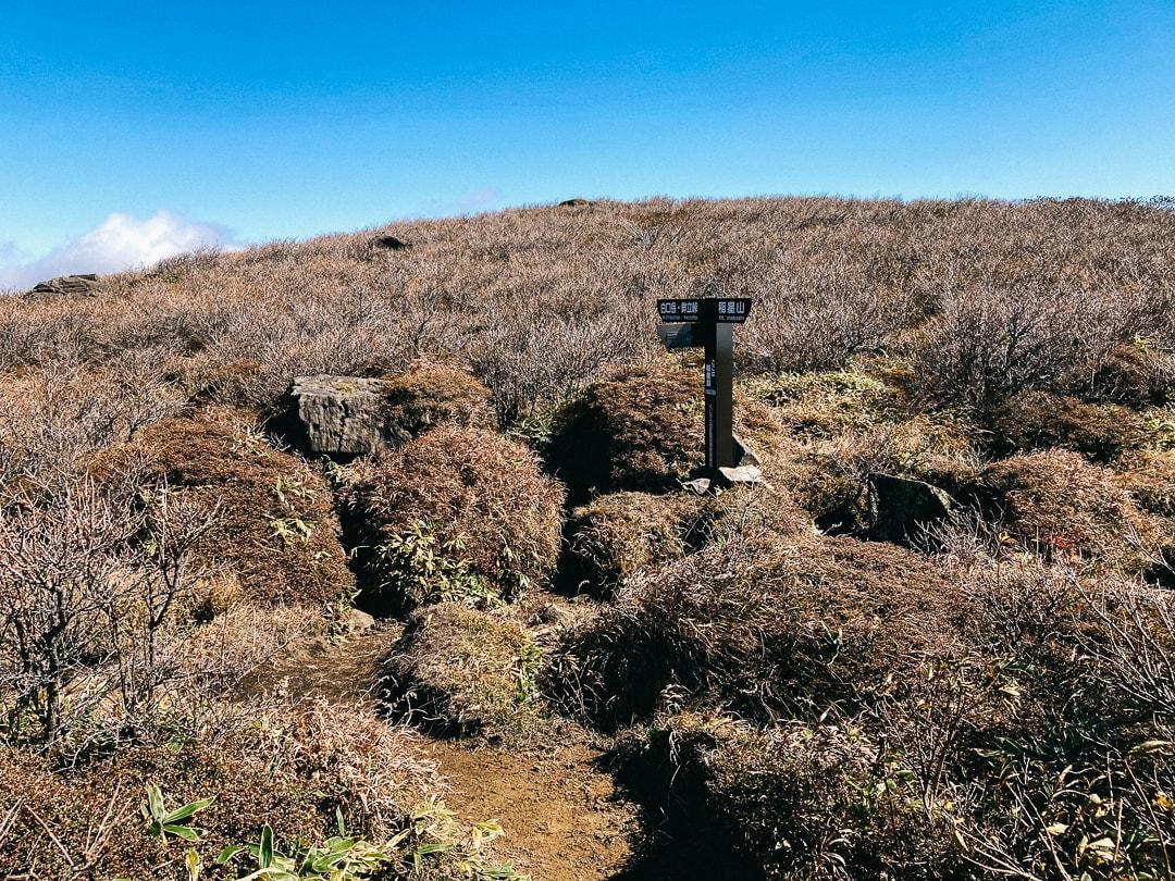 白口岳への縦走路